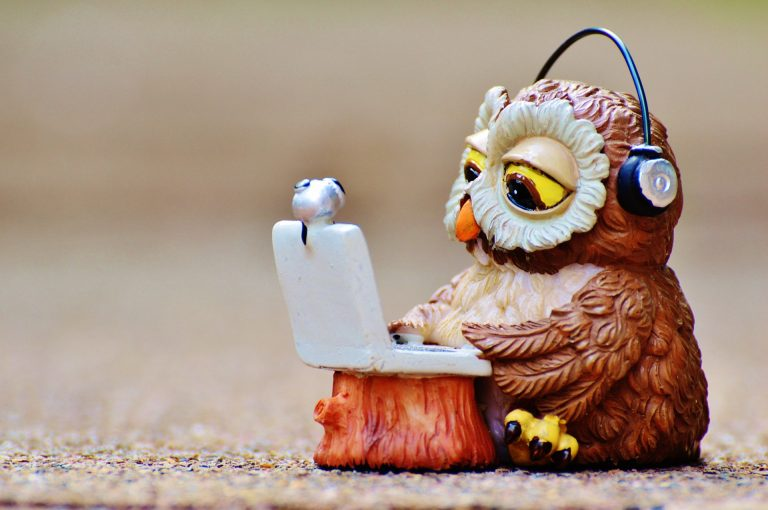 wise owl uses good internet provider